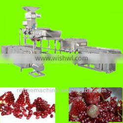 Pomegranate peel and seed separation unit