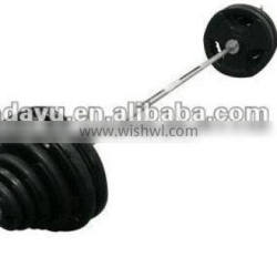Body Solid Rubber Grip Olympic Plate