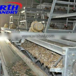 Chicken Layer Houses for Sale in Kenya (Local agent, whole year stock, visit customers every year)