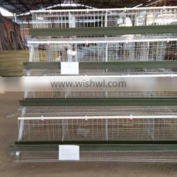 industrial galvanized steel Hot Galvanized Automatic Chicken Cage Quality Choice