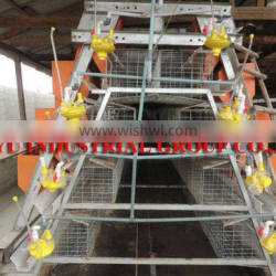 TAIYU Layer Chicken Cage with Auto Water Feed