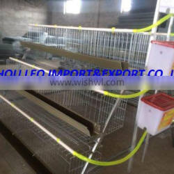 Mali Hot selling battery chicken layer cage