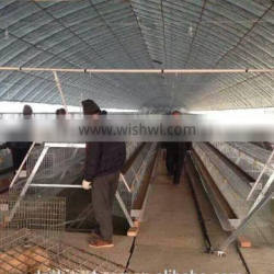 High quality price battery cages