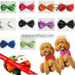 Cute fashion dog accessories in china dog collar dog bow tie Quality Choice