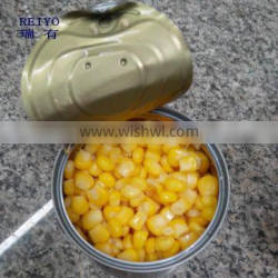 canned sweets corn product