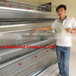 TAIYU Full Automatic and Semi Automatic Poultry Cage India