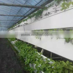 Hydroponic gutter with food grade