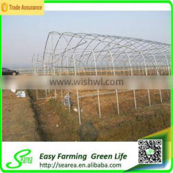 Low cost cheap greenhouse for sale