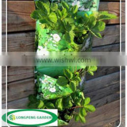 Planting Three Times For Balcony and Terrace,Cusmtomized Wall Pocket,Vertical Garden,Plant Bag